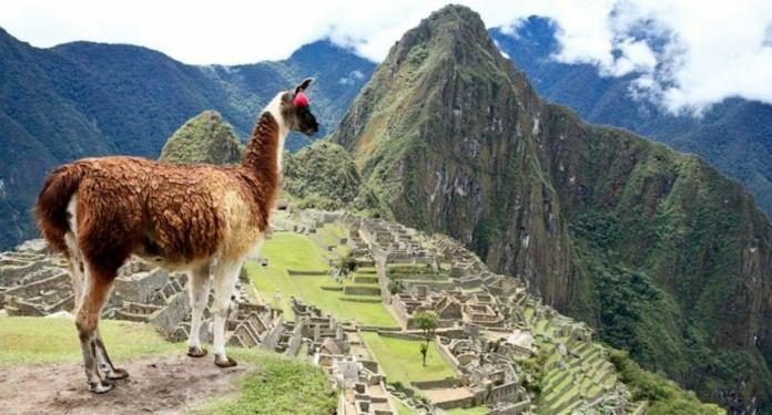 Alteração de Lei no Peru pode Modificar o Destino do Dinheiro Gerado pelos Cassinos