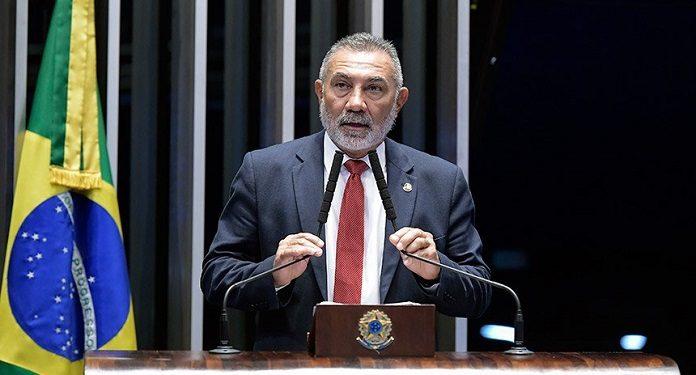 Rinhas De Galos Indicação Legislativa Tenta Legalizar Atividade no País