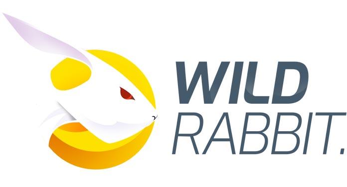 Estúdios-da-Wild-Rabbit-Visam-Mercados-Regulamentados
