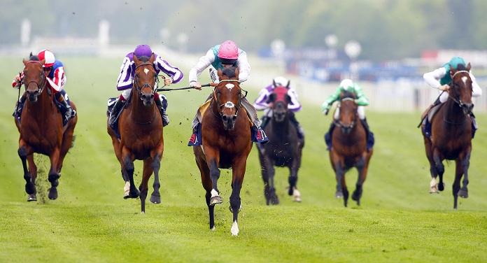 British Horseracing Association Adiciona Novo Chefe de ROA ao Conselho