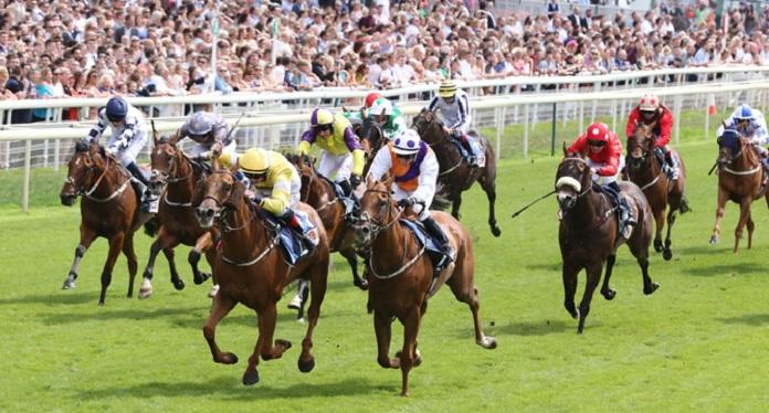 ARC dispensa taxas de apostas em corridas com público na Inglaterra até o fim de 2020