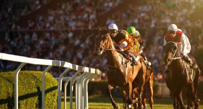 BHA anuncia plano para fortalecer a regulamentação de sindicatos e clubes de corrida