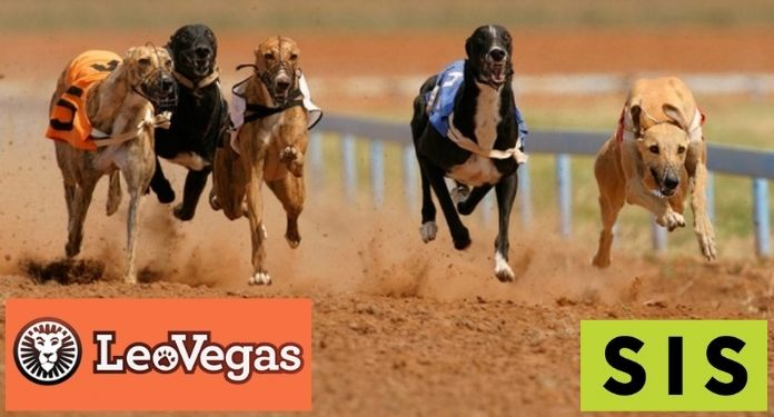 SIS signs deal for delivery of greyhound racing content to LeoVegas
