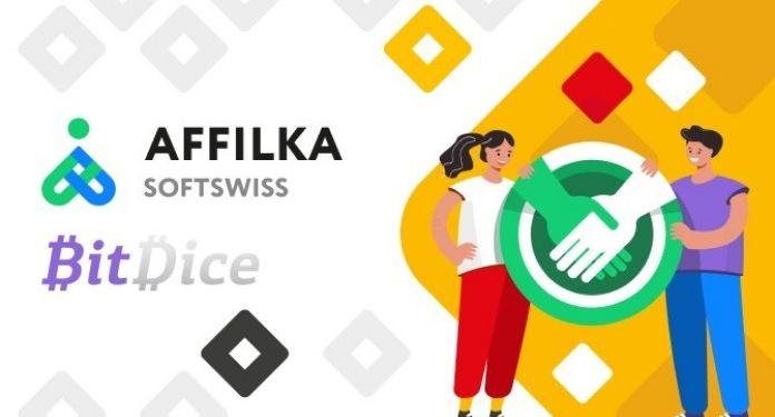 Affilka-anuncia-lancamento-de-novo-projeto-com-o-BitDice
